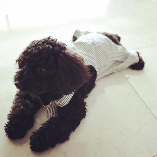 [140521] Taeyeon (SNSD) Update New Picture Ft Ginger [2]