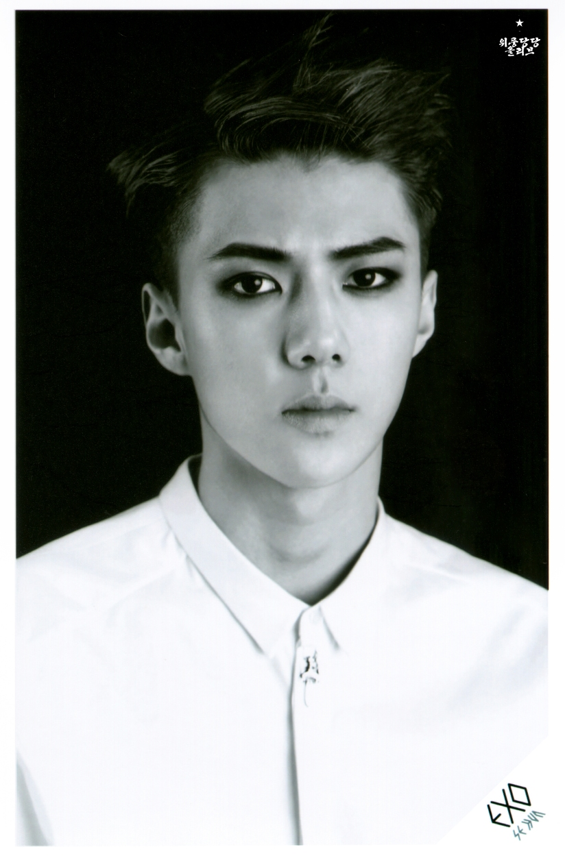 [140621] Sehun (EXO) OVERDOSE SD CARD SET B POP-UP STORE (Scan) by OliV_xoxo