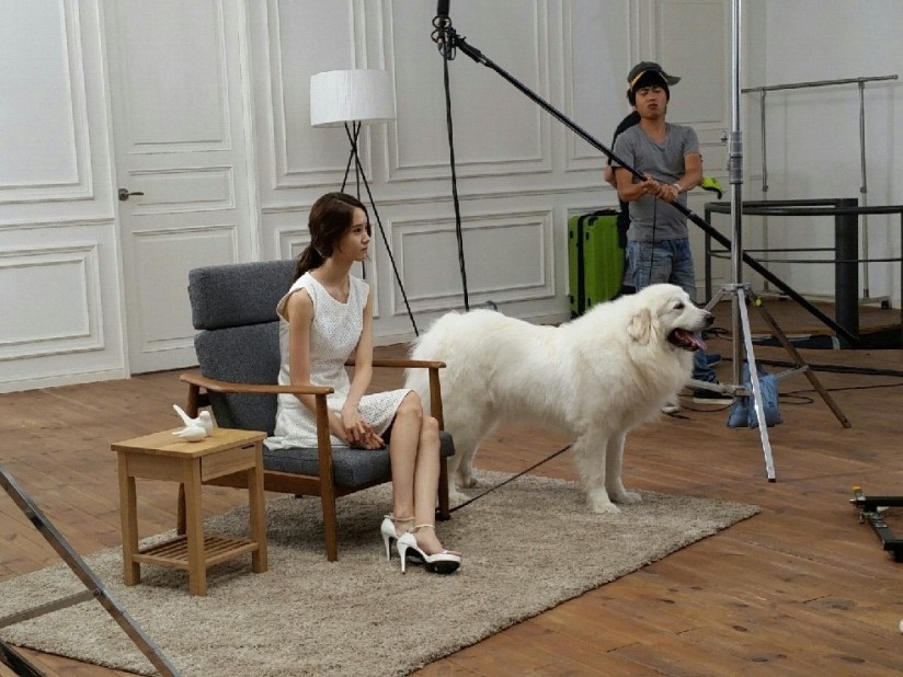 [140703] Yoona (SNSD) New BTS Picture for Innisfree CF via Petsasfamily's Cafe Naver [1]