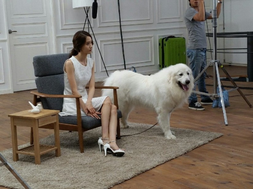 [140703] Yoona (SNSD) New BTS Picture for Innisfree CF via Petsasfamily's Cafe Naver [2]