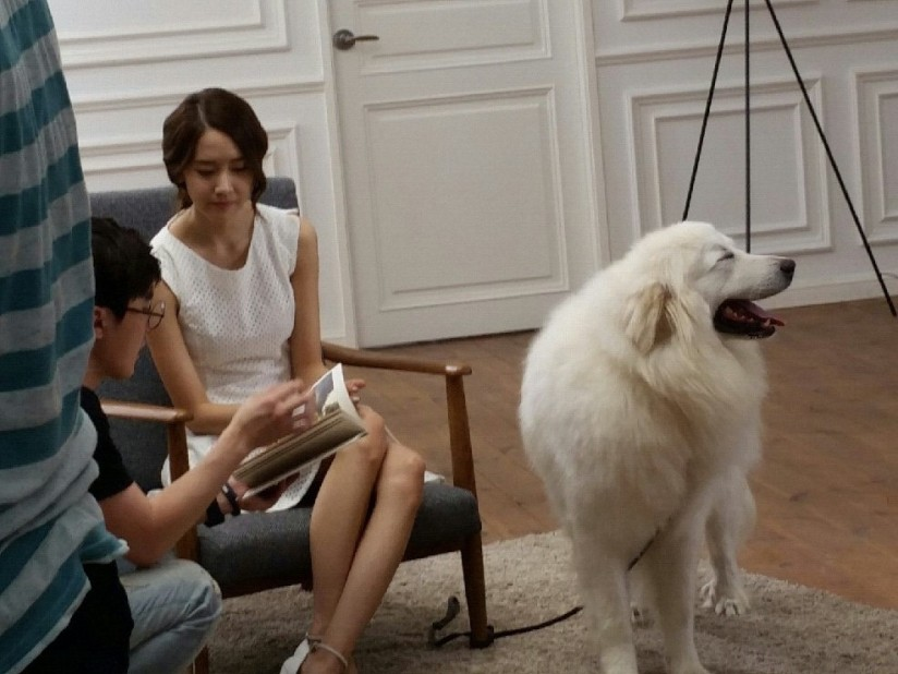 [140703] Yoona (SNSD) New BTS Picture for Innisfree CF via Petsasfamily's Cafe Naver [6]